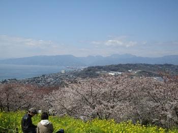 2012_04_30_13.jpg